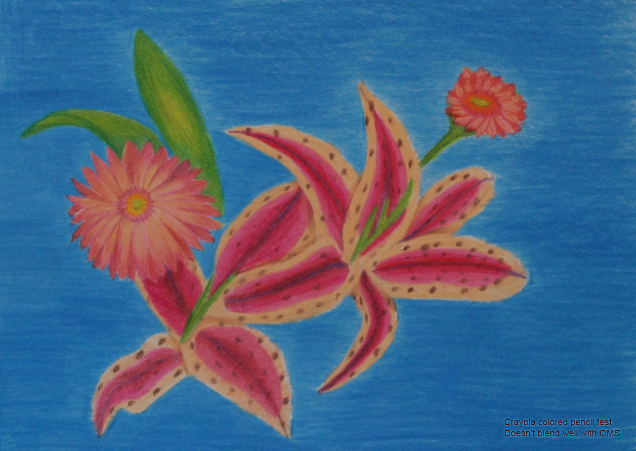 flowers in crayola colored pencil